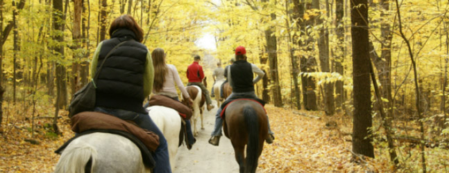 Happy Trails Horseback Ride Deluxe